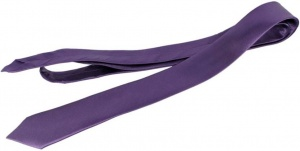 UNICARRESS Solid Men's Tie (Purple) UC-TY-205