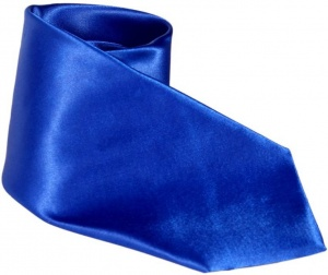 UNICARRESS Solid Men's Tie (Blue) Carma-Ty-309