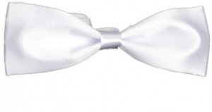 UNICARRESS Solid Men's Tie (White) Carma-Ty-317B