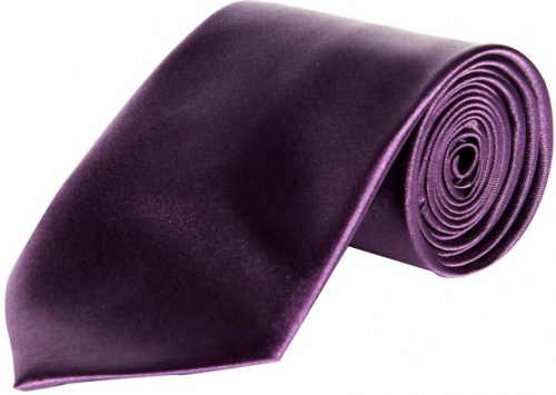 UniCarress Solid Men's Tie (Purple) Carma-Ty-316