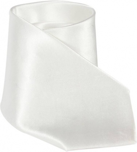 UNICARRESS Solid Men's Tie (White) Carma-Ty-305