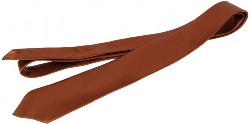 UniCarress Solid Men's Tie (Brown) CARMA-TY-209